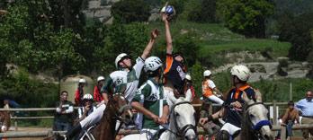 horseball1